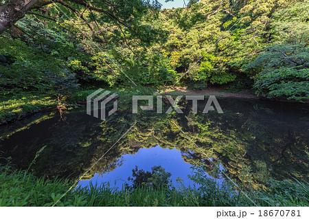 不増不減の池の写真素材 - PIXTA
