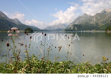 シルス湖の写真素材 - PIXTA