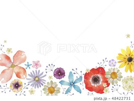 夏の花のイラスト素材集 Pixtaピクスタ